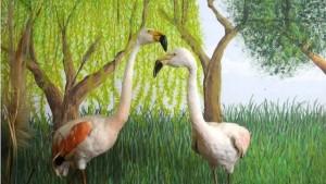 Exposición Flora y Fauna de Entre Ríos en el Museo de la Ciudad3
