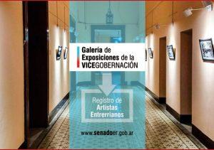 vicegobernacion - registro online flyer