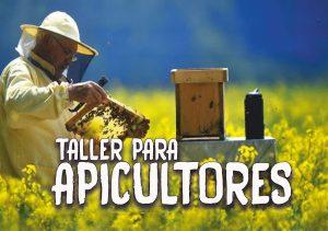 viale-importante-taller-para-apicultores