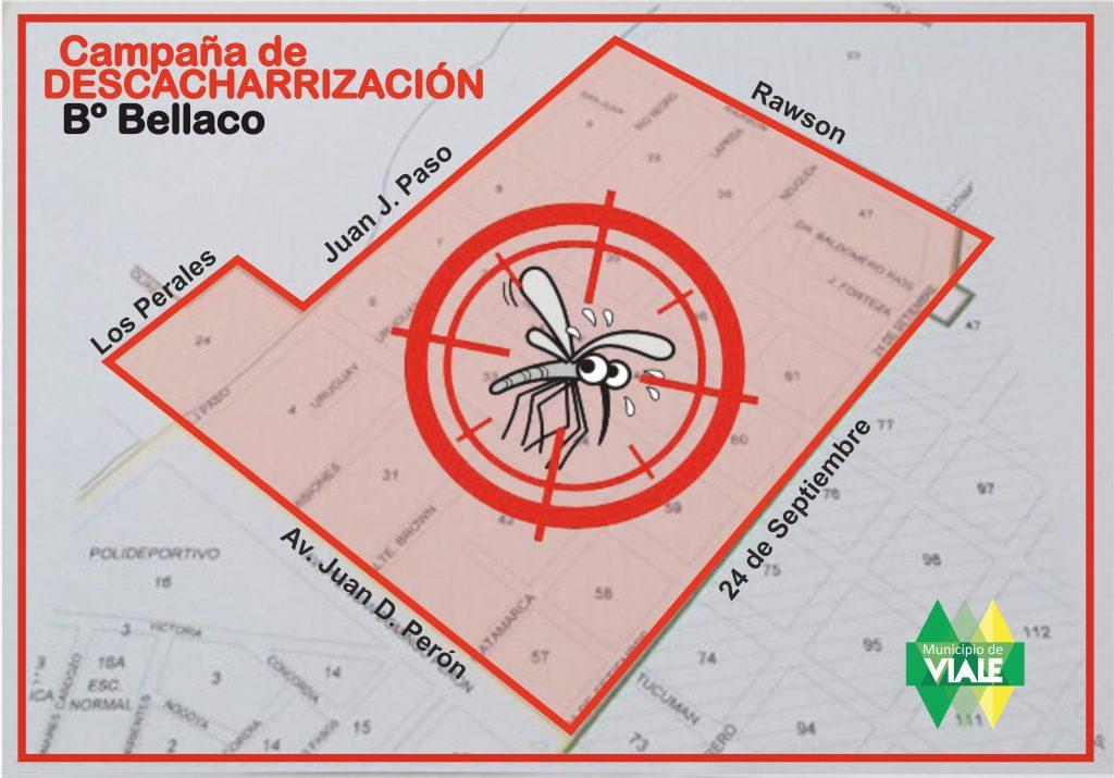 campana-contra-el-dengue1