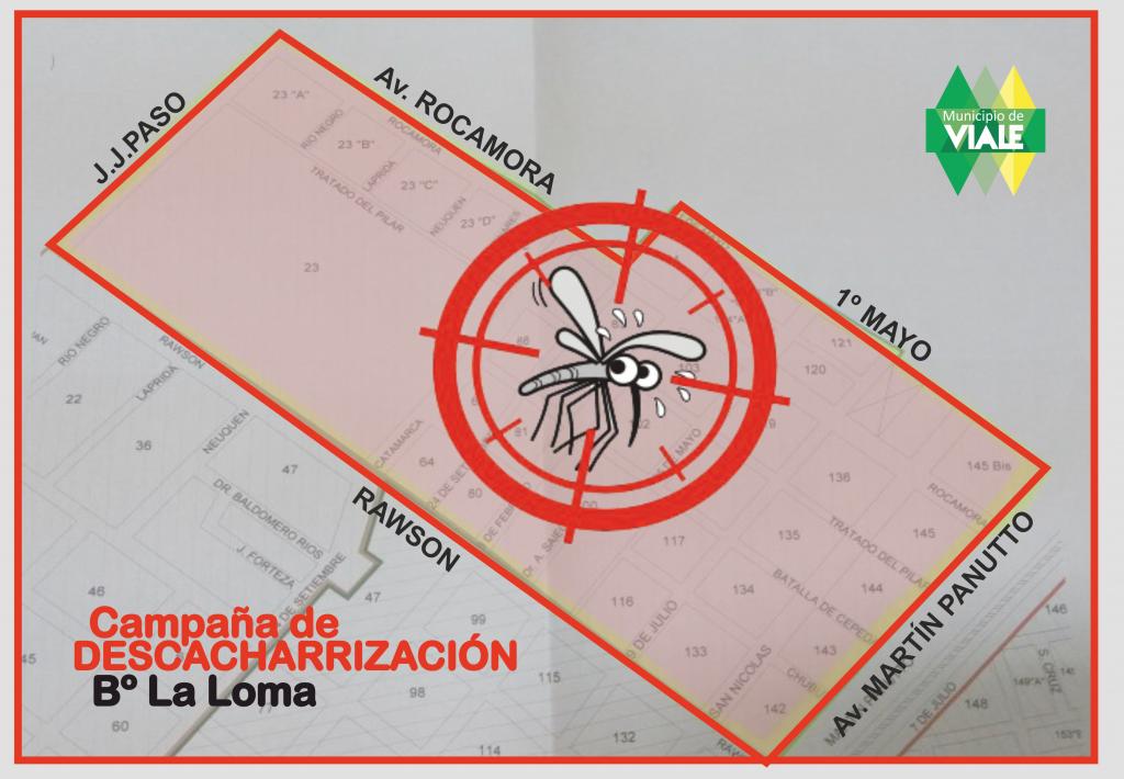 manana-recoleccion-de-chatarra-en-barrio-la-loma2